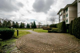 "Photo 19: 121 4728 DAWSON Street in Burnaby: Brentwood Park Condo for sale in ""MONTAGE"" (Burnaby North)  : MLS®# R2347416"