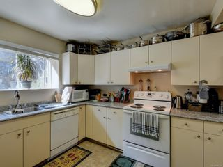 Photo 23: 6668 Rey Rd in Central Saanich: CS Tanner House for sale : MLS®# 886103