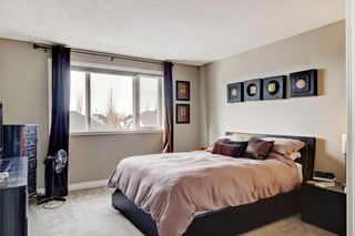 Photo 25: 101 CRANWELL Place SE in Calgary: Cranston Detached for sale : MLS®# C4289712