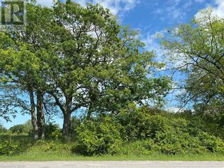 Photo 2: LOT 1 SUTTER CREEK Drive in Hamilton Twp: Vacant Land for sale : MLS®# 40138564