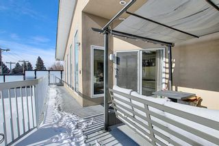 Photo 38: 63 Cromwell Avenue NW in Calgary: Collingwood Detached for sale : MLS®# A1060725