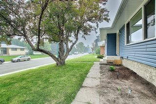 Photo 47: 1936 Matheson Drive NE in Calgary: Mayland Heights Detached for sale : MLS®# A1130969