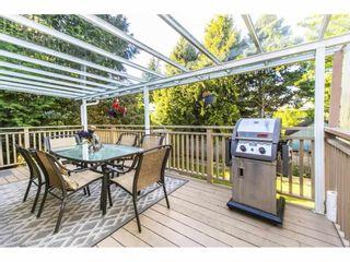 Photo 34: 11825 WARREN Place in Delta: Annieville House for sale (N. Delta)  : MLS®# R2588485