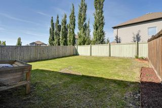 Photo 47: 9266 212 Street in Edmonton: Zone 58 House for sale : MLS®# E4249950
