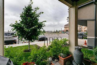 Photo 24: 119 20 Mahogany Mews SE in Calgary: Mahogany Apartment for sale : MLS®# A1124761