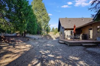 Photo 19: PALOMAR MTN House for sale : 7 bedrooms : 33350 Upper Meadow Rd in Palomar Mountain