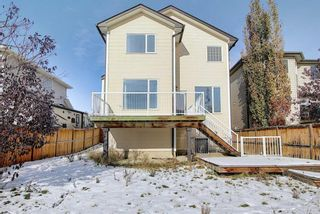 Photo 43: 23 Evanscove Heights NW in Calgary: Evanston Detached for sale : MLS®# A1063734