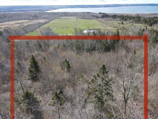 Photo 2: Lot 217 Highway in Rossway: 401-Digby County Vacant Land for sale (Annapolis Valley)  : MLS®# 202111048