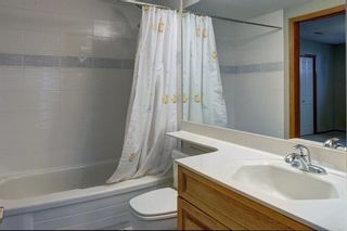Photo 41: 115 SIGNAL HILL PT SW in Calgary: Signal Hill House for sale : MLS®# C4267987