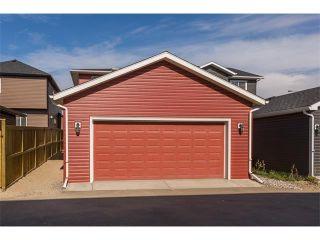Photo 41: 928 EVANSTON Drive NW in Calgary: Evanston House for sale : MLS®# C4034736