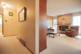 Photo 26: 4111 107A Street in Edmonton: Zone 16 House for sale : MLS®# E4249921