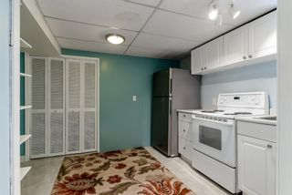Photo 23: 336 Wascana Crescent SE in Calgary: Willow Park Detached for sale : MLS®# A1144272