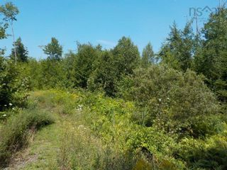 Photo 4: Lot M-1 127 Charleswood Drive in Windsor Junction: 30-Waverley, Fall River, Oakfield Vacant Land for sale (Halifax-Dartmouth)  : MLS®# 202121061