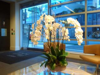 Photo 2: 405 1477 W PENDER STREET in VANCOUVER: Coal Harbour Condo for sale (Vancouver West)  : MLS®# R2027504