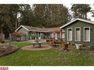 Photo 1: 13264 CRESCENT Road in Surrey: Elgin Chantrell House for sale (South Surrey White Rock)  : MLS®# F1102594