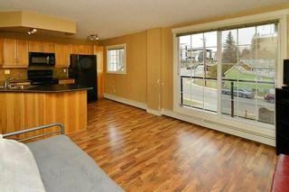 Photo 6: 102 117 38 Avenue SW in Calgary: Parkhill Condo for sale : MLS®# C4143037