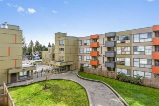Photo 14: 318 12085 228 Street in Maple Ridge: East Central Condo for sale : MLS®# R2442173