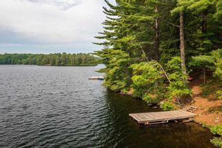 Photo 39: 16 1500 Fish Hatchery Road in Muskoka Lakes: House (Bungalow) for sale : MLS®# X5267124