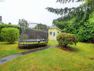 Photo 23: 1743 Armstrong Ave in VICTORIA: OB North Oak Bay House for sale (Oak Bay)  : MLS®# 818993