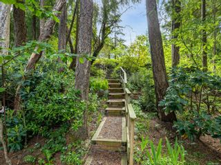 Photo 47: 6620 David Pl in : Na Upper Lantzville House for sale (Nanaimo)  : MLS®# 882647