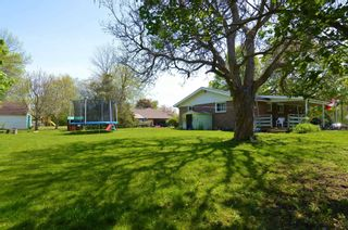 Photo 6: 18 Anne Street in Quinte West: House (Bungalow) for sale : MLS®# X5246040