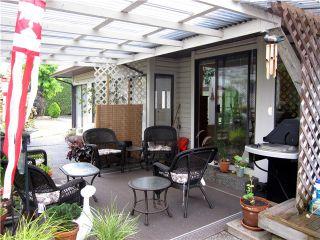 Photo 16: 20115 PATTERSON Avenue in Maple Ridge: Southwest Maple Ridge House for sale : MLS®# V1136191