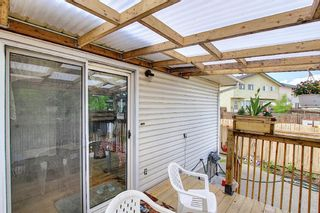 Photo 29: 217 Templemont Drive NE in Calgary: Temple Semi Detached for sale : MLS®# A1120693