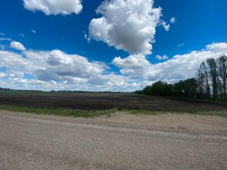 Photo 4: NW 34-49-27-W4 none: Rural Leduc County Rural Land/Vacant Lot for sale : MLS®# E4247276
