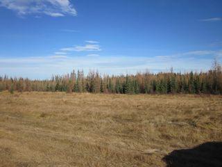 Photo 14: NE 13-54 Range Road 130: Niton Junction Rural Land for sale (Edson)  : MLS®# 32591