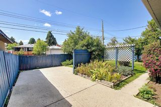 Photo 47: 48 DOVERTHORN Place SE in Calgary: Dover Detached for sale : MLS®# A1023255
