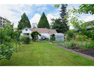 Photo 2: 22274 117TH Avenue in Maple Ridge: West Central House for sale : MLS®# V1038607