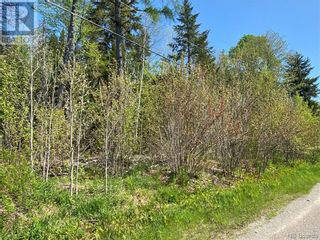 Photo 37: 5264 Rte 770 in Rollingdam: Vacant Land for sale : MLS®# NB058269