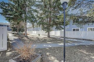 Photo 34: 56 251 90 Avenue SE in Calgary: Acadia Row/Townhouse for sale : MLS®# A1095414