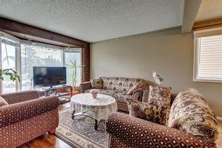 Photo 7: 307 FALTON Drive NE in Calgary: Falconridge Detached for sale : MLS®# C4238621