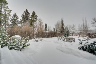 Photo 44: 6628 Bow Crescent NW in Calgary: Bowness Detached for sale : MLS®# A1047495