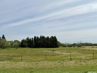 Photo 16: Abbott Acreage in Duck Lake: Residential for sale (Duck Lake Rm No. 463)  : MLS®# SK856969