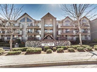 "Photo 1: 414 33478 ROBERTS Avenue in Abbotsford: Central Abbotsford Condo for sale in ""Aspen Creek"" : MLS®# R2567628"