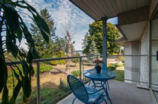 Photo 1: 203 738 S Island Hwy in : CR Campbell River North Condo for sale (Campbell River)  : MLS®# 885035