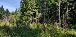 Photo 5: 428 CAMPBELL BAY Road: Mayne Island House for sale (Islands-Van. & Gulf)  : MLS®# R2596415
