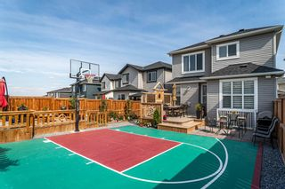 Main Photo: 212 Nolanhurst Crescent NW in Calgary: Nolan Hill Detached for sale : MLS®# A1147718