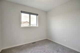 Photo 26: 8 COPPERPOND Avenue SE in Calgary: Copperfield Detached for sale : MLS®# C4296970