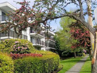 Photo 2: 305 1170 Rockland Ave in : Vi Rockland Condo for sale (Victoria)  : MLS®# 866972