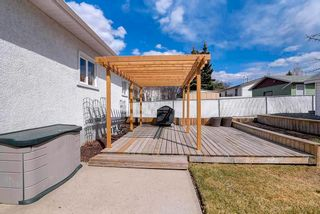 Photo 26: 38 Sturgeon Road: St. Albert House for sale : MLS®# E4240966