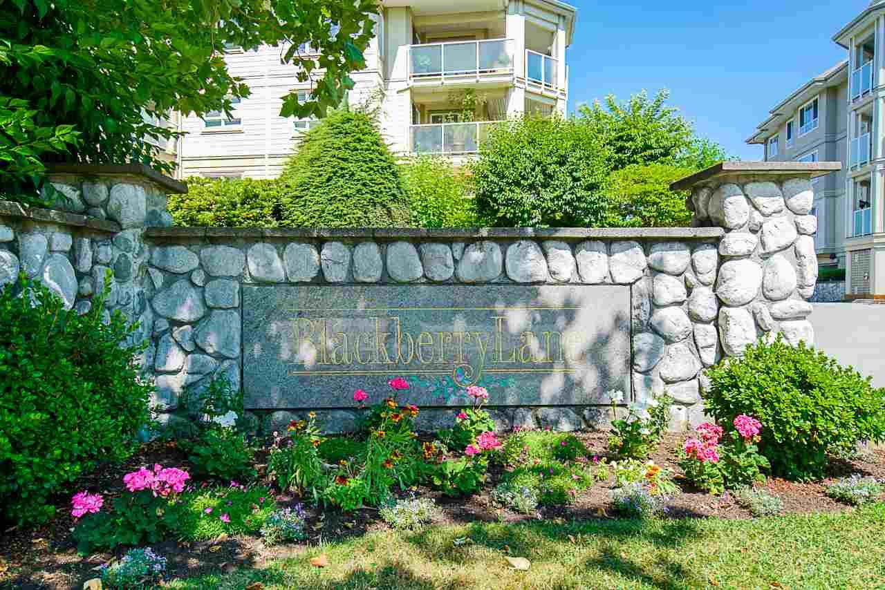"""Main Photo: 104 20125 55A Avenue in Langley: Langley City Condo for sale in """"Blackberry II"""" : MLS®# R2484759"""