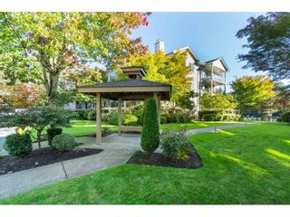 """Photo 19: 205 20443 53RD Avenue in Langley: Langley City Condo for sale in """"Countryside Estates"""" : MLS®# R2408980"""