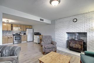 Photo 37: 155 Templevale Road NE in Calgary: Temple Detached for sale : MLS®# A1119165