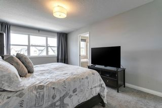 Photo 25: 56 Masters Rise SE in Calgary: Mahogany Detached for sale : MLS®# A1112189