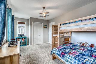 Photo 28: 36 Auburn Springs Cove SE in Calgary: Auburn Bay Detached for sale : MLS®# A1150528