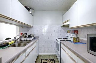 Photo 16: 110 11 DOVER Point SE in Calgary: Dover Apartment for sale : MLS®# A1118273