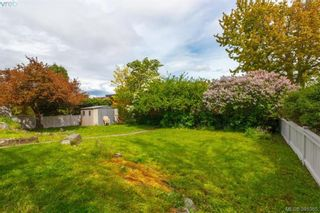 Photo 15: 2921 Gosworth Rd in VICTORIA: Vi Oaklands House for sale (Victoria)  : MLS®# 786626